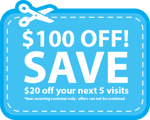 Cleaning Services coupon save 100 dollars